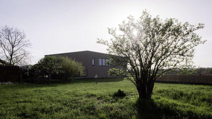 House Elevation Backyard